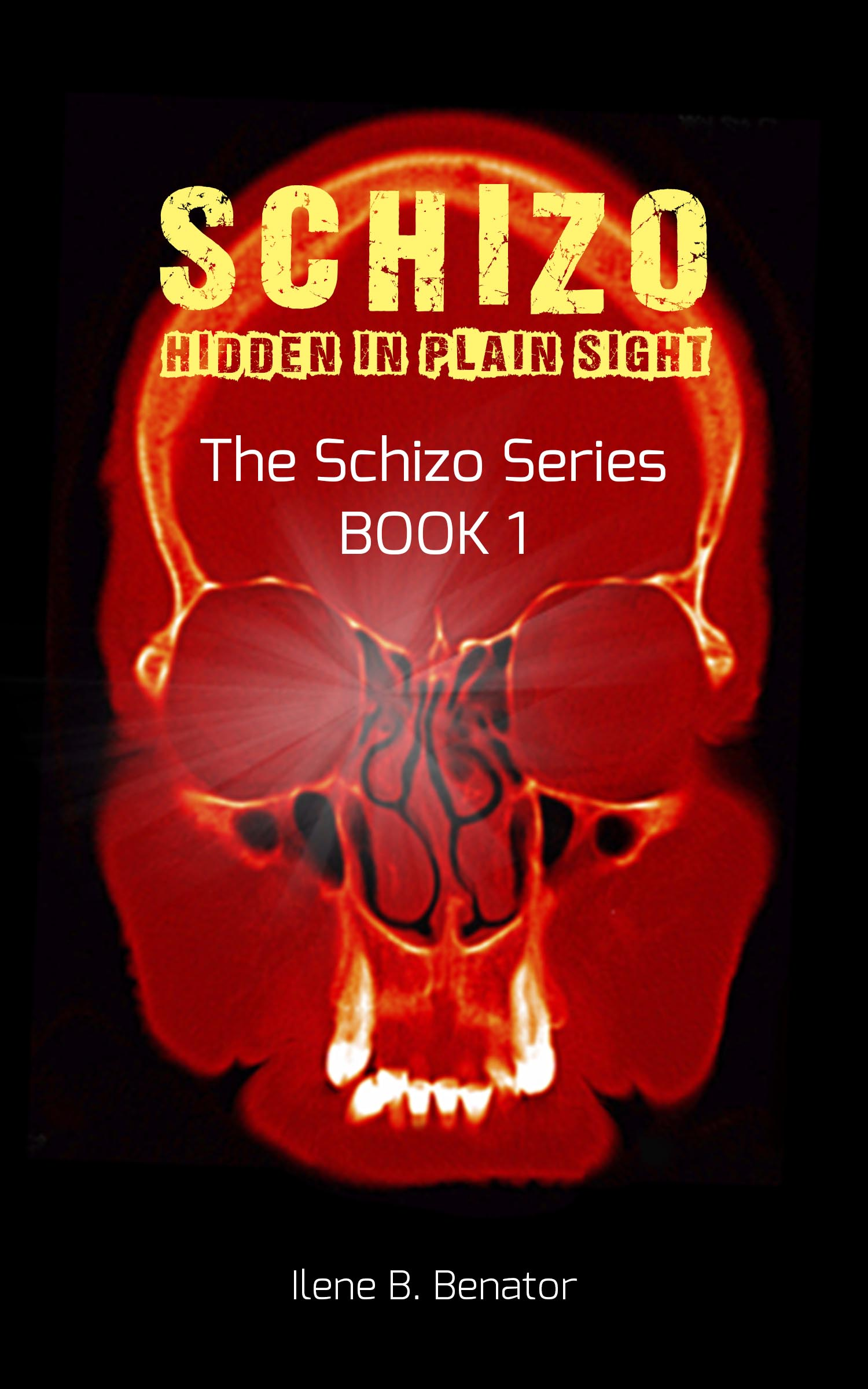 Hi Res Schizo Cover